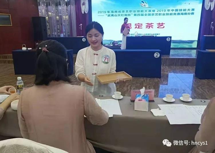 海南省茶行业竞赛